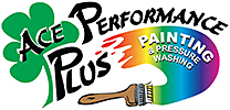 Ace Performance Plus Painting